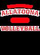 Allatoona Fan Favorite Heavyweight Hooded Unisex Sweatshirt