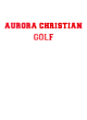 Aurora Christian Heavyweight Sport Tek Adult Hooded Sweatshirt