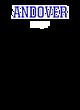 Andover Heavyweight Sport Tek Adult Hooded Sweatshirt