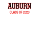 Auburn Sport-Tek Youth Posi-UV Pro Tee