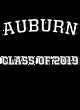Auburn Lightweight Hooded Unisex Sweatshirt