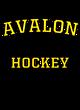Avalon Holloway Electrify Long Sleeve Performance Shirt