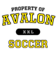 Avalon Holloway Electron Long Sleeve Performance Shirt
