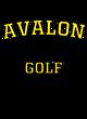 Avalon Fan Favorite Heavyweight Hooded Unisex Sweatshirt