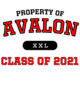 Avalon Classic Fit Heavy Weight T-shirt