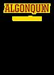 Algonquin Fan Favorite Heavyweight Hooded Unisex Sweatshirt
