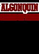 Algonquin Champion Heritage Jersey Tee