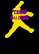 Tech Nike Legend Tee