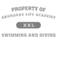Abundant Life Academy Sport-Tek Posi-UV Pro Tee