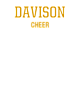 Davison Ladies Tri-Blend Performance T-Shirt