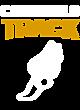 Davison Nike Dri-FIT Sport Swoosh Pique Polo