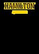 Hamilton Youth Hooded Sweatshirt