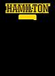 Hamilton Fan Favorite Youth Hooded Sweatshirt