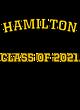 Hamilton Holloway Ladies Echo Performance Pullover