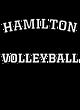 Hamilton Womens Holloway Heather Electrify Perform Shirt