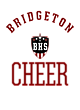 Bridgeton Nike Ladies Dri-FIT Cotton/Poly Scoop Neck Tee