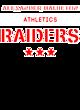 Alexander Hamilton Ladies Tri-Blend Wicking Draft Hoodie Tank