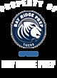 Bay Ridge Prep Youth Hyperform Sleeveless Compression Shirt