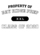 Bay Ridge Prep Ladies Performance Blend V-Neck T-Shirt