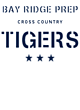 Bay Ridge Prep Champion Heritage Jersey Tee