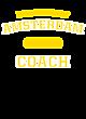 Amsterdam Fan Favorite Heavyweight Hooded Unisex Sweatshirt
