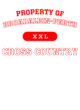 Broadalbin-Perth Fan Favorite Heavyweight Hooded Unisex Sweatshirt