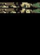 Broadalbin-Perth Russell Essential Tank