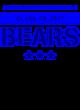 Albany Academy For Girls Fan Favorite Heavyweight Hooded Unisex Sweatshirt